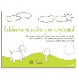 c0077 - Birthday invitations