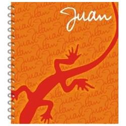lb0044 - Notebooks - Lizard