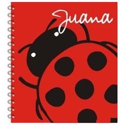 lb0045 - Notebooks - Ladybug