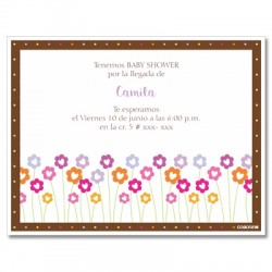 b0017 S - Invitaciones - Baby Shower