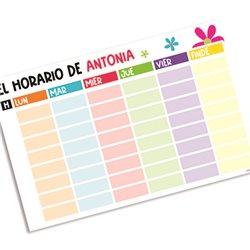 OR0014 - ORGANIZADOR - HORARIO
